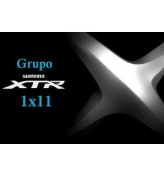 Grupo XTR 2015 1x11v